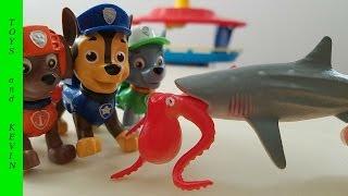 Щенячий патруль новые серии Щенки спасают осьминога Хэнка от акулы