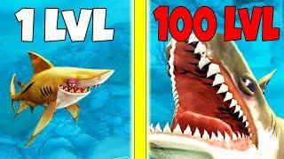 ЭВОЛЮЦИЯ АКУЛЫ В МЕГАЛОДОНА, САМАЯ БОЛЬШАЯ АКУЛА | Hungry Shark World