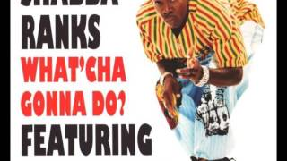 Shabba Ranks Feat. Queen Latifah What cha Gonna Do 40th Street Hip Hop Mix.mp3