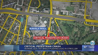 Woman hit by driver while walking her dog; in critical condition