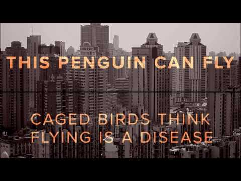 This Penguin Can Fly - Caged Birds Think Flying is a Disease [Full Album]