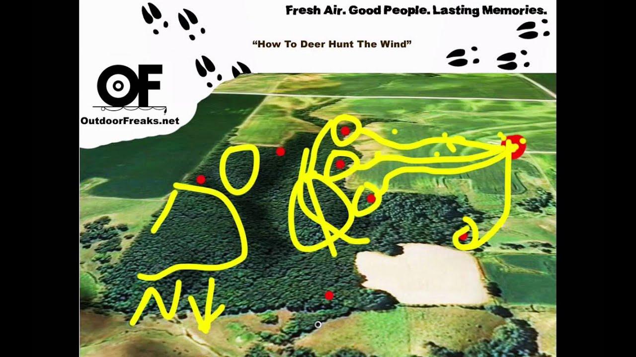 how to play yahtzee hunt