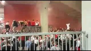 Wir spielen wieder im Europapokal!!! 1. Fc Köln fans nach dem Sieg gegen mainz