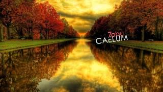 Tobu Caelum.mp3