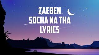 Zaeden - socha na tha (Lyrics)