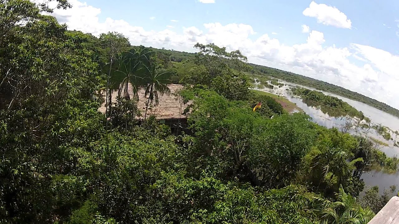 Amazon jungle tree house youtube for Jungle house music