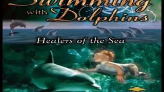 ALIENS ON EARTH - Swimming with Dolphins FEATURE