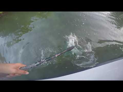 Backcountry Fishing Key Largo, FL EP.3