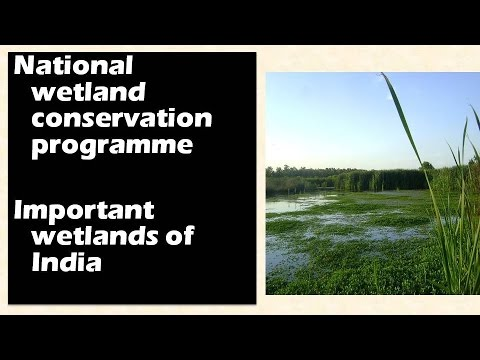 Important wetlands of India: National wetland conservation programme (NWCP)