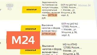 В базу приставов попали звезды шоу-бизнеса - Москва 24