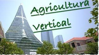 El futuro: Agricultura en Edificios