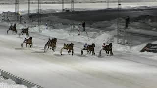 Vidéo de la course PMU PRIX UNG I NORR - FYRAARINGSLOPP