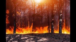 Армагеддон в России! Пожары, наводнения, протесты и восстания - Антизомби