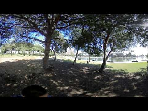 Vuze 3D 360 video test - grove of trees at a park