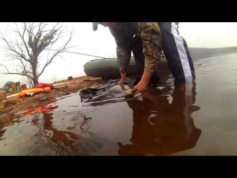 Buffelspoort Dam Specimen Fishing