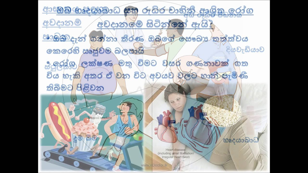 non communicable disease sinhalese video non communicable disease sinhalese video