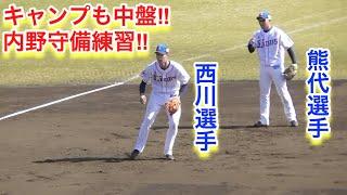 2019年2月 西武ライオンズ春野キャンプ 内野守備練習.