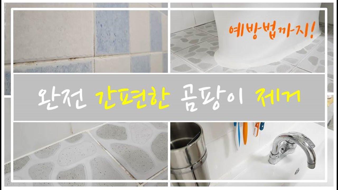 욕실 곰팡이 청소 이제 몰아서 하지 마세요!/간편한 곰팡이 제거방법!(ft.곰팡이 예방법)