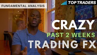 Forex Fundamental Analysis | Biggest Moves in the Past 2 Weeks!!