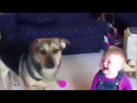 Приколы с детьми приколы с животные заразительный детский смех
