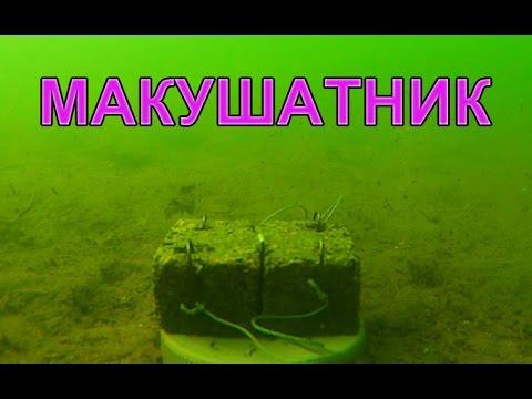 Макушатник по карпу НЕ сработал. Проба снять под водой. underwater. Рыбалка. fishing