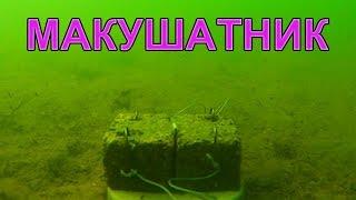 Макушатник по карпу НЕ сработал. Проба снять под водой. underwater. Рыбалка. fishing(Пробовал снять под водой макушатник: ради интереса, да и хотелось показать, что это не жаберный способ ловли..., 2015-05-21T21:18:19.000Z)
