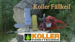 Starkholzfällung ohne Koller Fällkeil