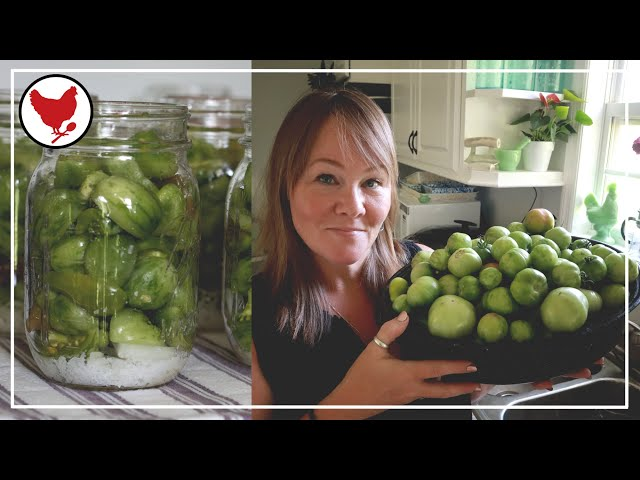 GREEN TOMATO PICKLES - Preserving the Harvest   A Good Life Farm