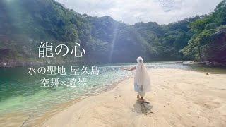 龍の心 - 水の聖地 屋久島 祈り 舞 遊琴