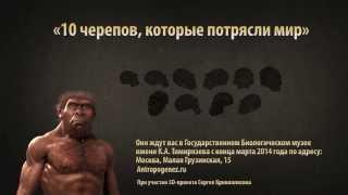 Выставка ''10 черепов, которые потрясли мир'': промо