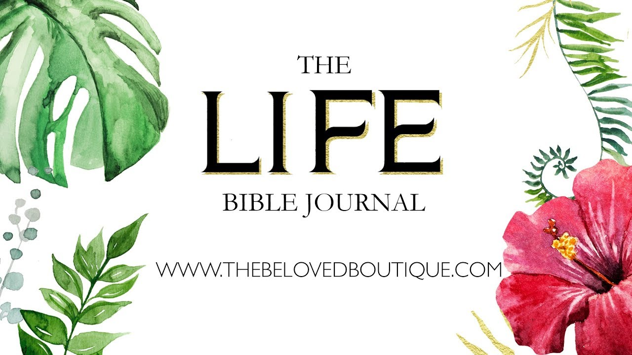 The Life Bible Journal Youtube