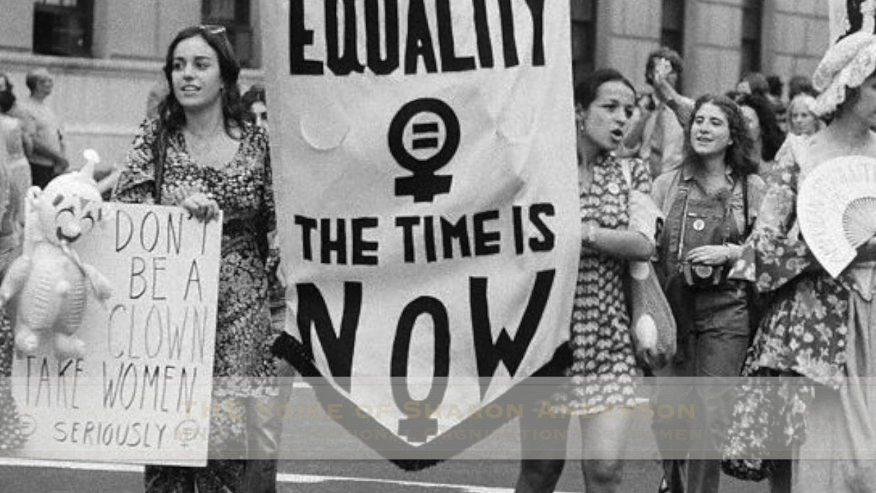 controversial feminist topics As a feminist strategy, reclaiming negative stereotypes of female sexuality is bound to be imperfect, because if the process of reclaiming is not sufficiently overt, it can risk slipping back into the status.