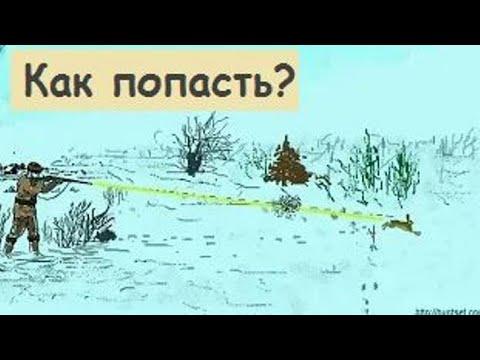Охота на зайца. Прицеливание и стрельба по зайцу