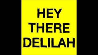 Hey there delilah 1 hour long
