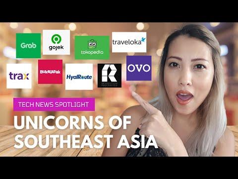 The Unicorn Startups of Southeast Asia