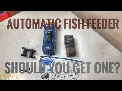 Automatic Fish Feeder Review