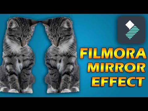 FILMORA filters | how to apply the mirror effect to any video | basic tutorial for beginners