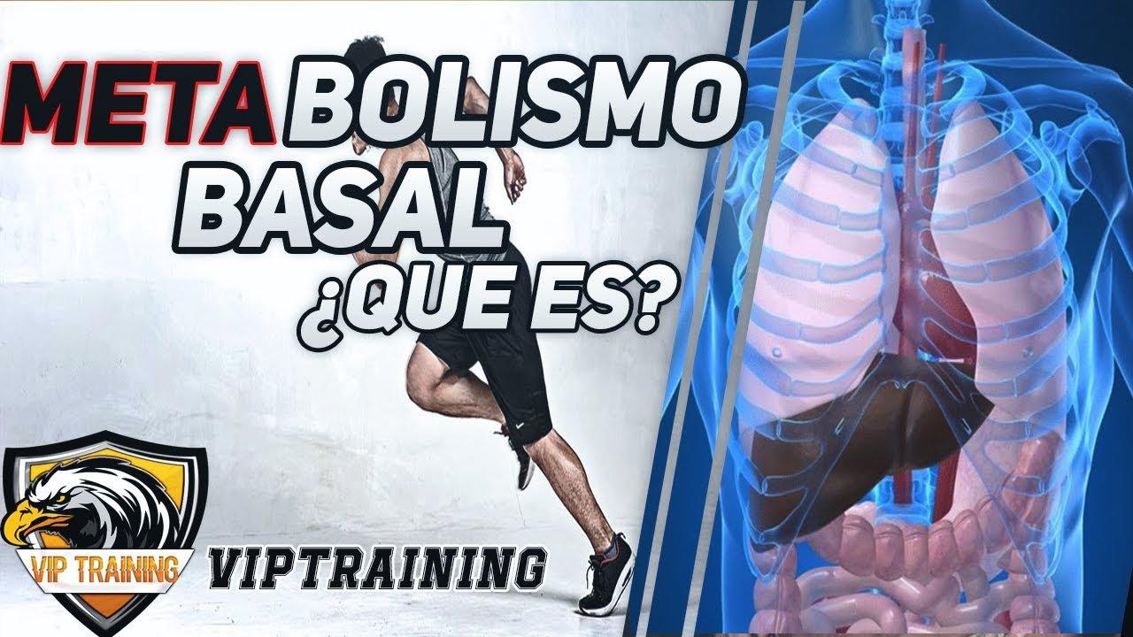 Que es el metabolismo basal? Parte 1 - Vip Training con..