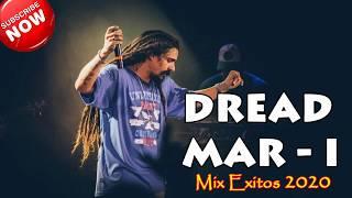 Reggae En Español   Reggae Español MIX TODOS SUS EXITOS 2020