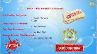 Lesson - 05 : UNIX - File Related Commands in Unix