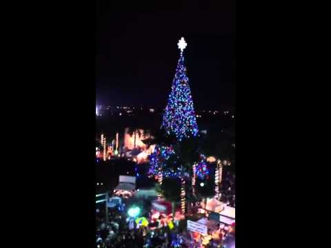 Delray Beach Christmas Tree Lighting at 110 E Atlantic Ave. & Delray Beach Christmas Tree Lighting at 110 E Atlantic Ave. - YouTube
