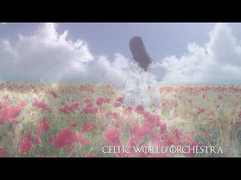 Now We Are Free by Celtic World Orchestra