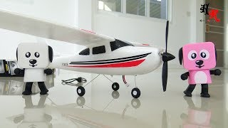 F949 Cessna 182 Fly with the Birds | Hobby Review