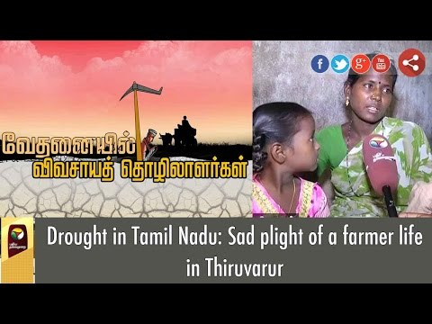 Drought in Tamil Nadu: Sad plight of a farmer life in Thiruvarur