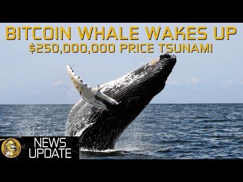 Bitcoin Whale $250,000,000 Moved - Price Tsunami Coming?