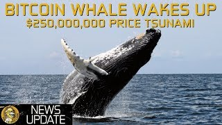 Bitcoin Whale $250,000,000 Moved - Price Tsunami Coming?