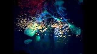 Gremlins - Louder