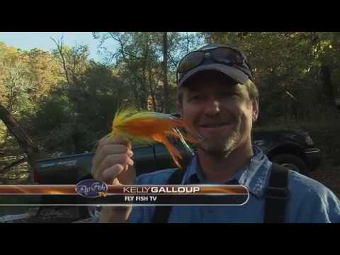 Musky Fly Fishing Tennessee
