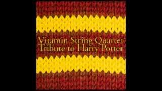 The Quidditch World Cup - Vitamin String Quartet Tribute to the Music of Harry Potter