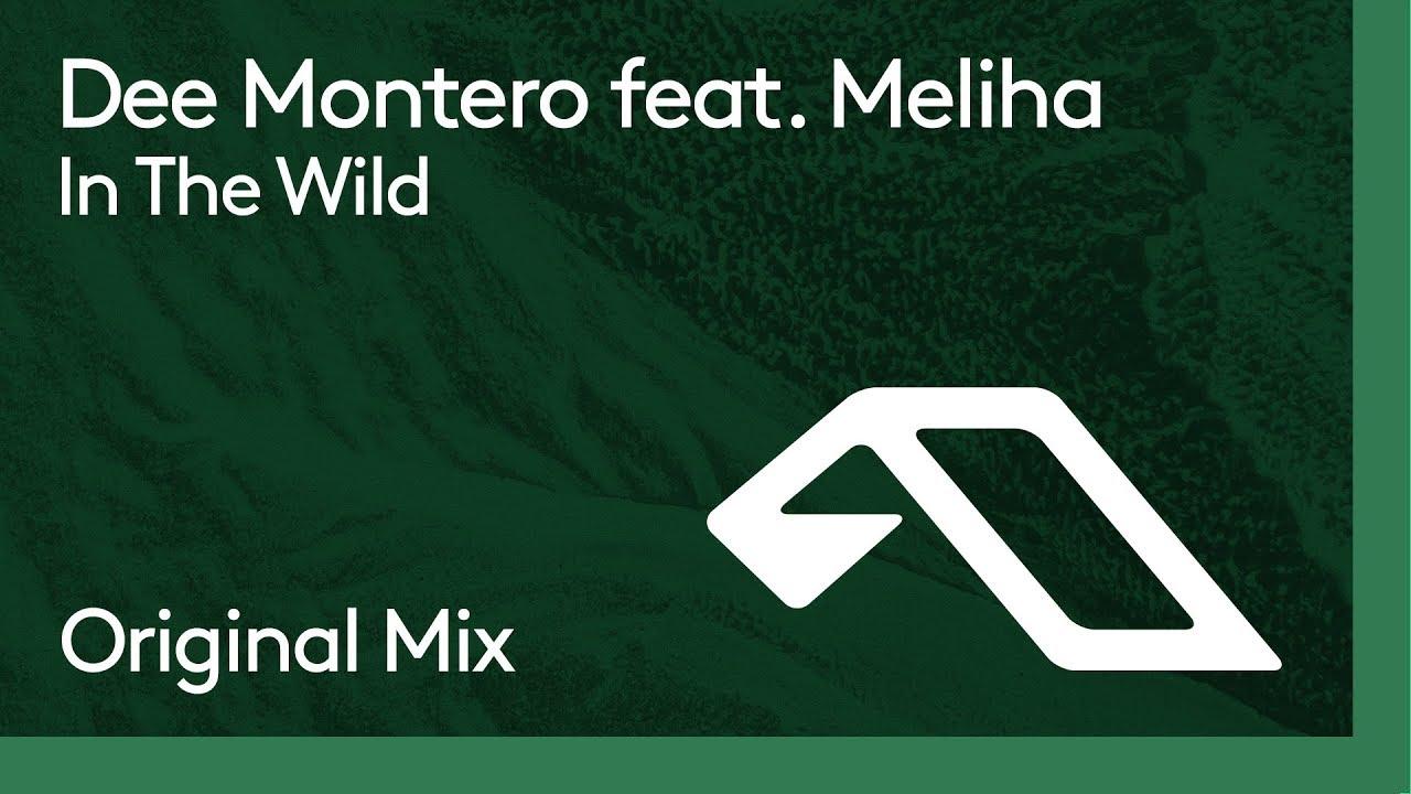 Dee Montero feat. Meliha - In The Wild